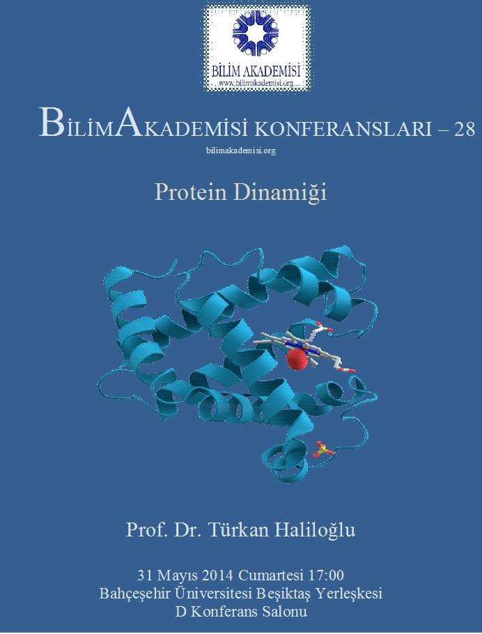 Protein Dynamics – Speaker: Türkan Haliloğlu