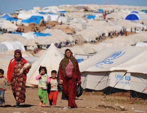 Call from The Science Academy, Turkey on the Global Refugee Crisis